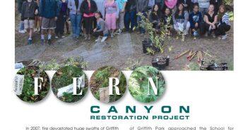 Fern-Canyon-Brochure-0