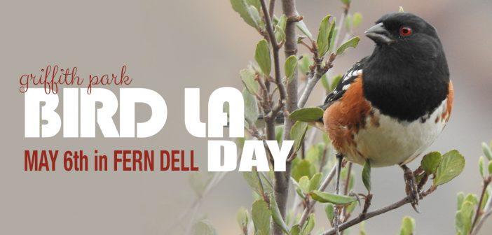 Bird LA Day 2017