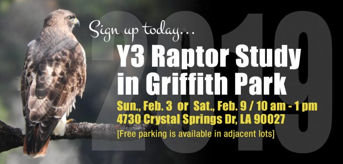 Sign up Today for the Raptor Study Training in Early Feb!